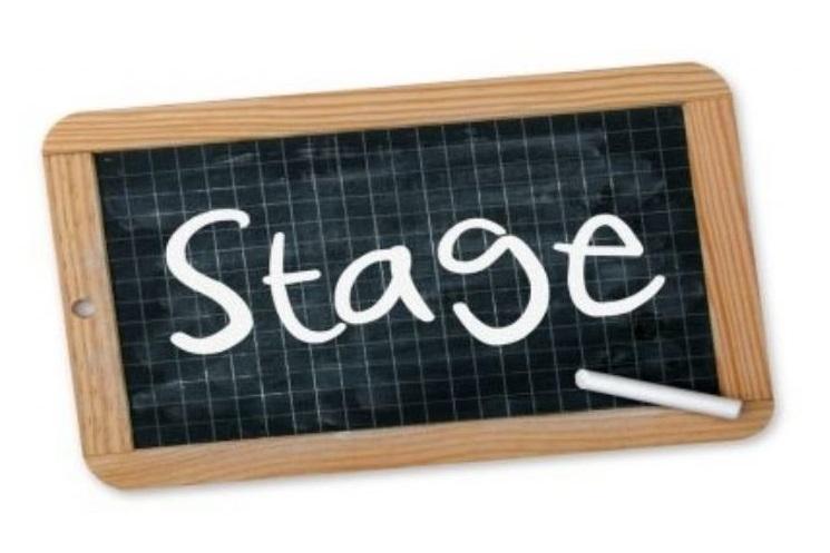 Stagemodule